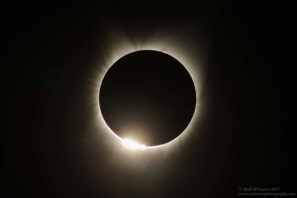 Baileys Beads, the Corona, and Solar Prominence seen at Totality. Photo by Rick Whitacre