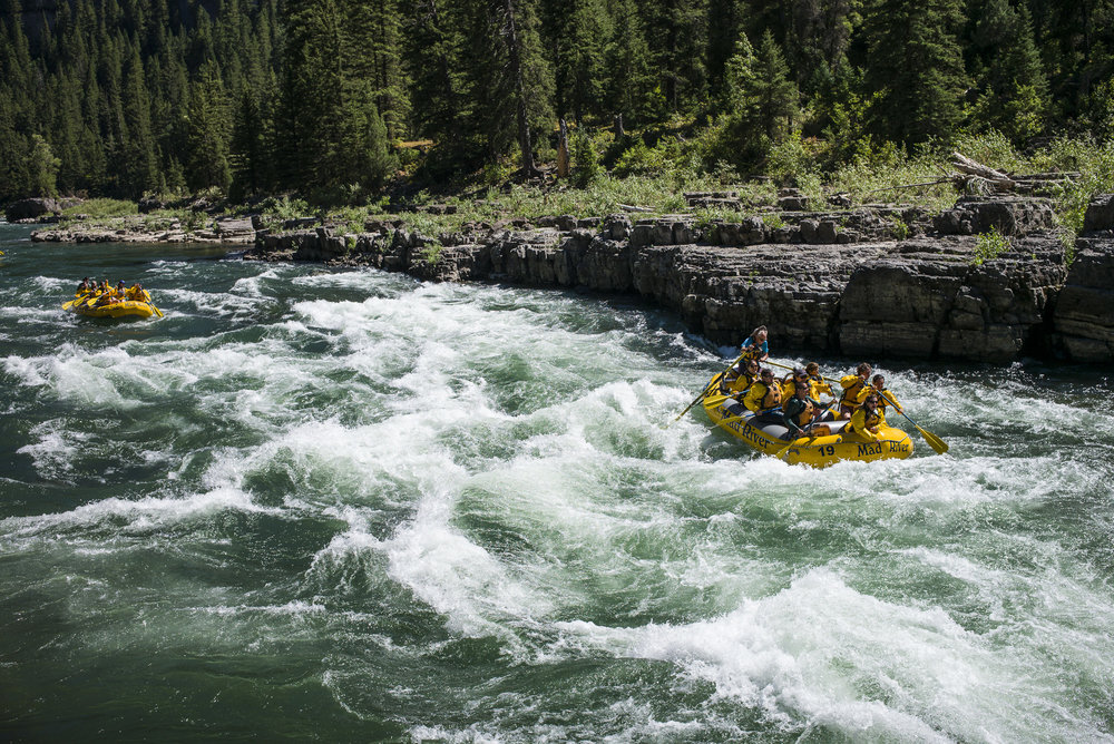 Rafting the Snake River