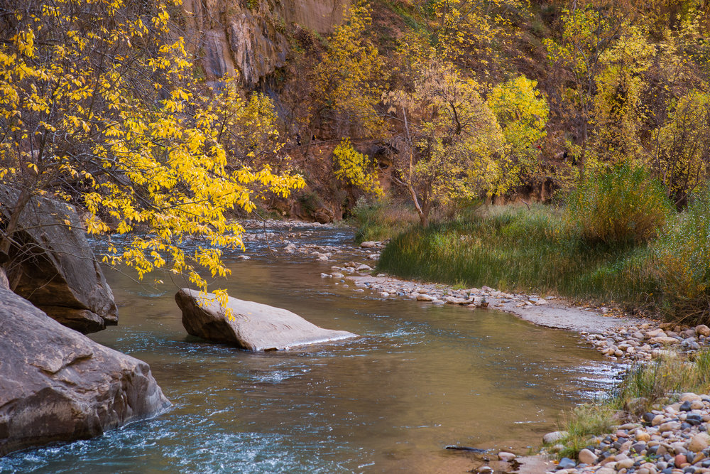 Virgin River along the riverwalk