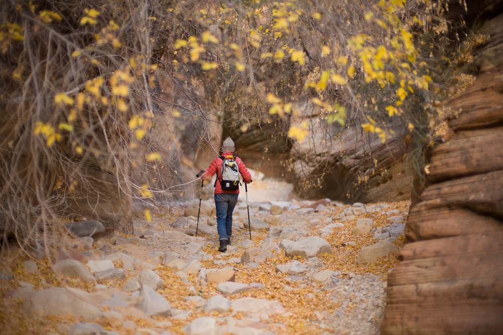 Cheryl walking the canyon wash