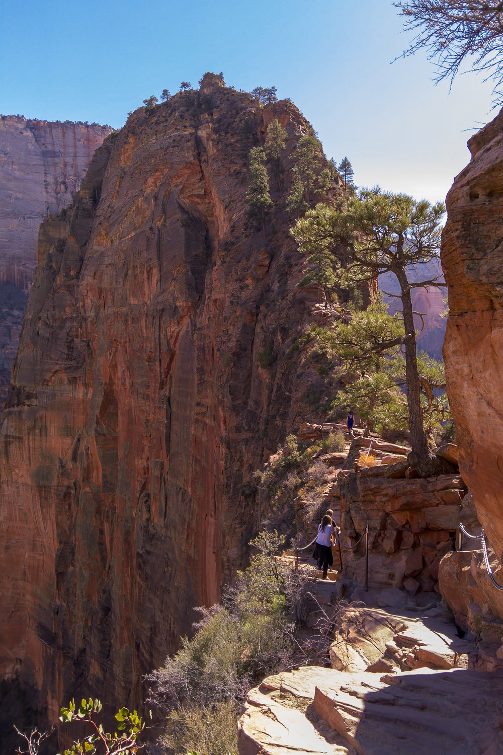 Light L16 at 28mm - Angels Landing Trail