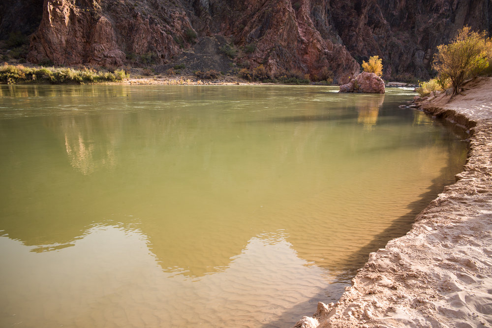The sandy beach on the Colorado River