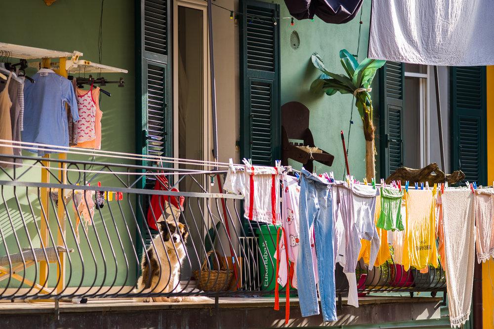 A typical scene in Cinque Terre