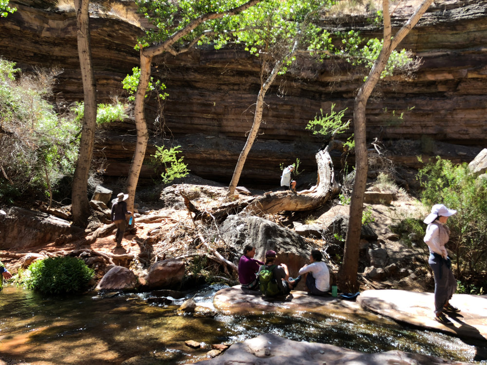 The oasis above the slot canyon