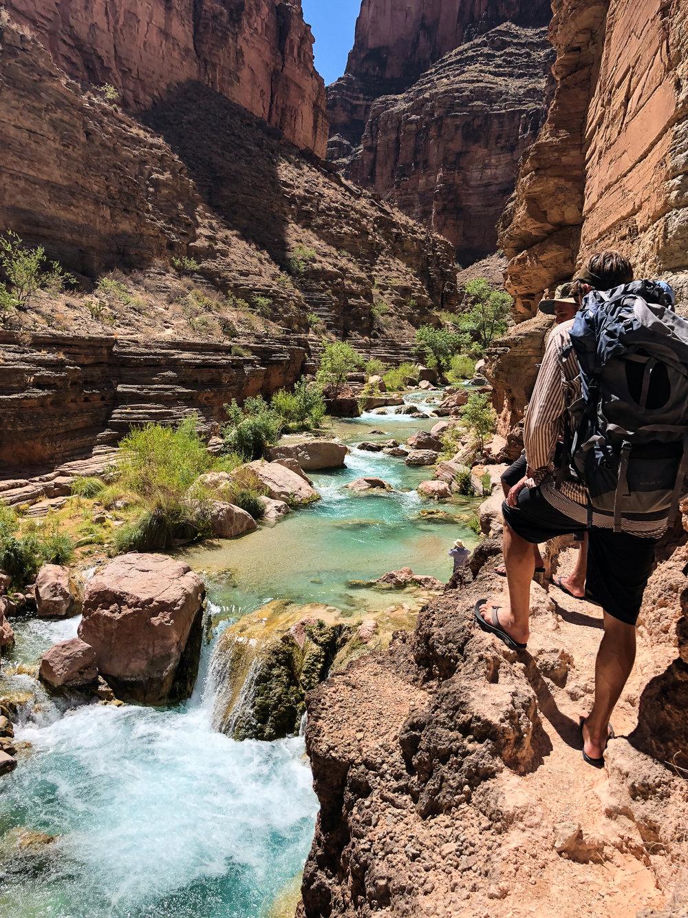 Hiking up the trail of Havasu creek