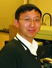Dr. Qingxin Yang