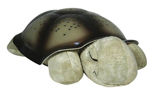 turtle nightlight.jpg