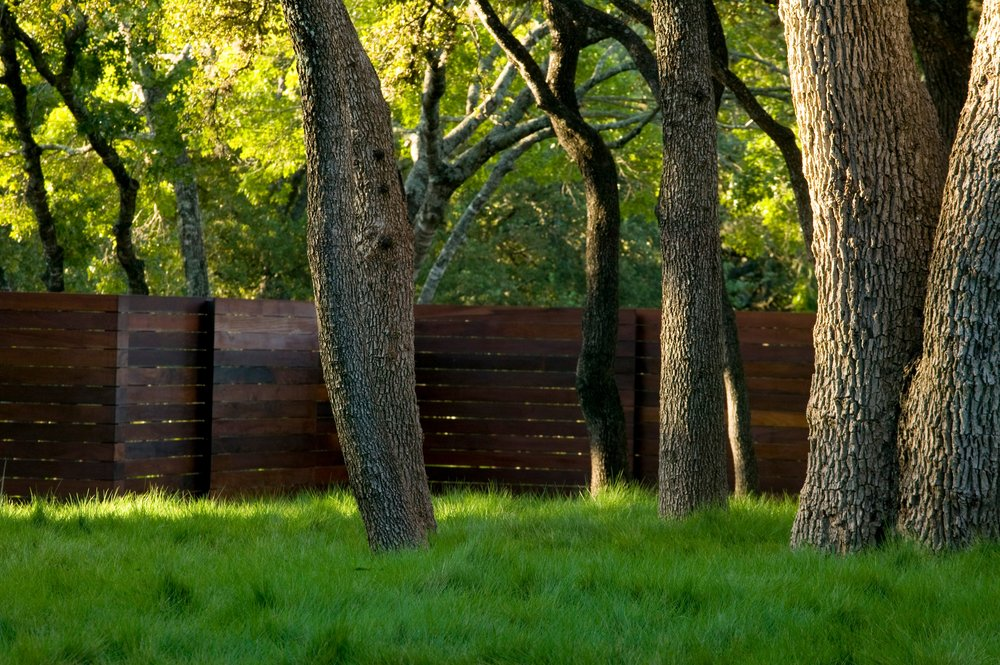 Fences_005.jpg