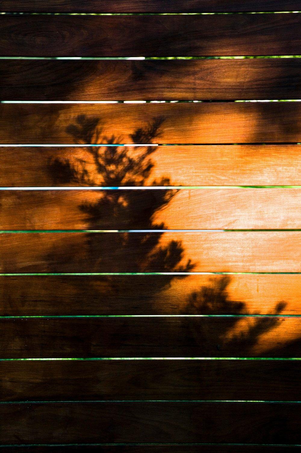 Fences_006.JPG