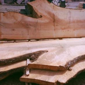 Sustainable table slabs Gig Harbor