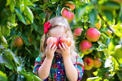 Picking Apples_Sidewalk Blog.jpg