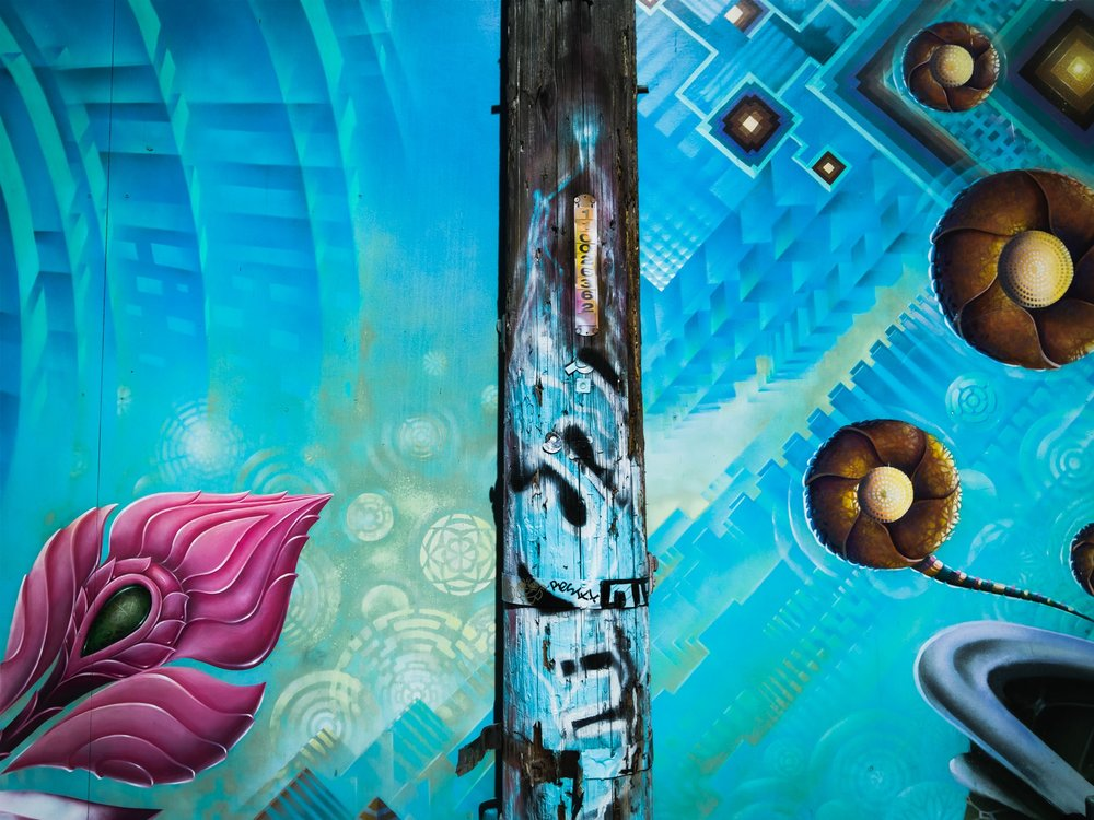 Cypress Alley Street Art Captured by Light L16-min.jpg