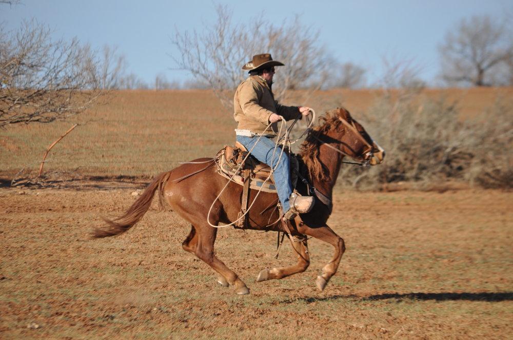 Williamson Ranch 1-14-13 (717).JPG