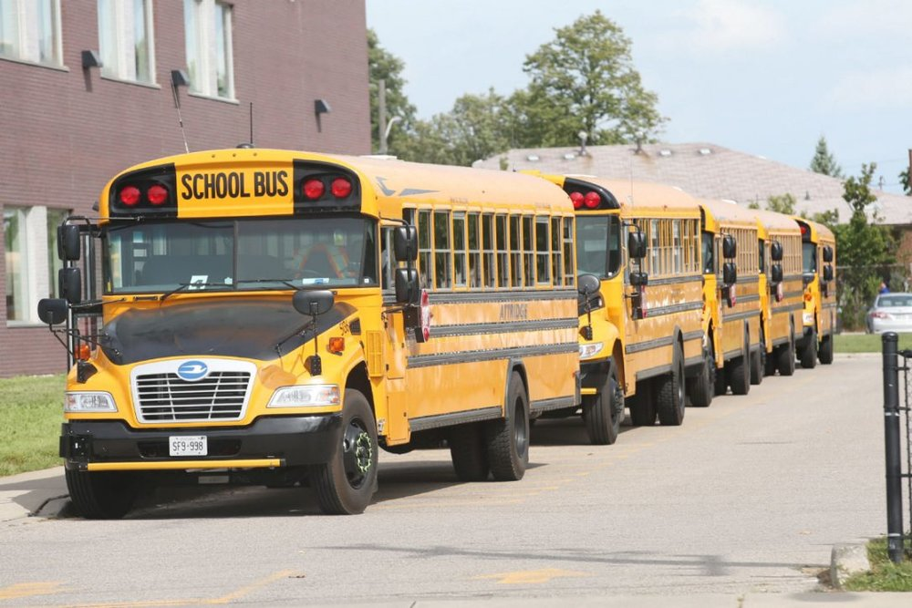 school-buses.jpg.size.custom.crop.1086x724.jpeg