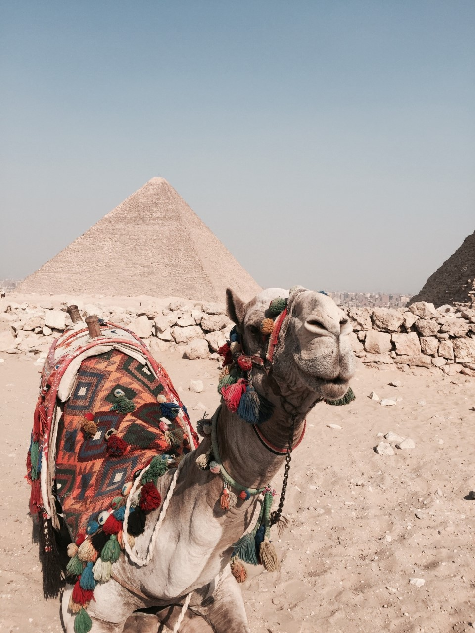 PYRAMIDS OF GIZA - One of the Seven wonders of the world.