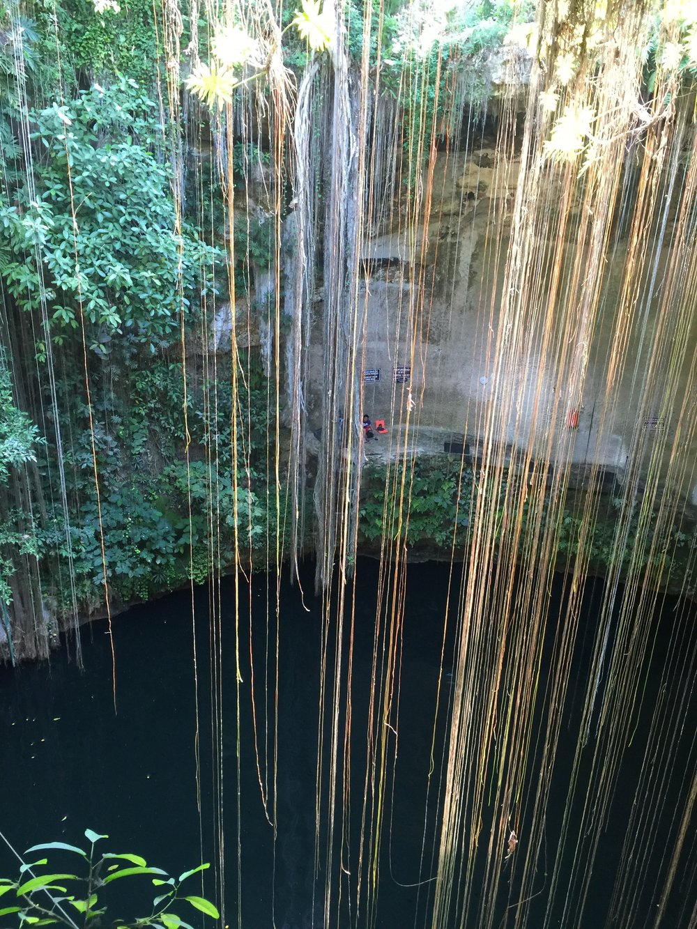 CENOTE IK KIL  - One of the most photogenic & beautiful cenotes in the Yucatan peninsula. Dive right in to cool you down in the humid heat.{Tip: Come here first, before you head to Chichen Itza, arrive before 8am to get the cenote to yourselves (save yourselves from those neon colored life jackets in your pictures) and catch breakfast at there local hotel restaurant right above the cenote! }