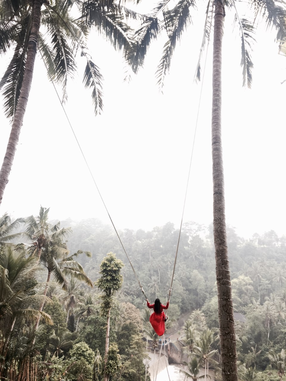 BALI SWING - Bali Swing have five single swings, tandem swing, two cute nests and a stone to take pictures over the edge above the valley with an amazing view on the canyon and waterfall.A thrilling experience with amazing pictures! A MUST WHEN IN BALI!