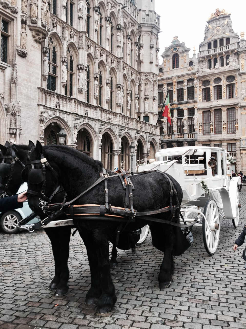 GRAND PLACE/GROTE MARKET  - The an iconic square in the Belgian capital of Brussels. Amazing architectures, just browse around while admiring the amazing buildings.