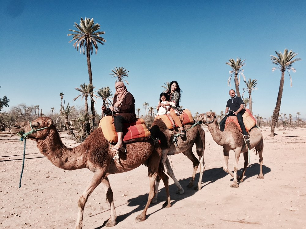 PALMERAIE - Palmeraie is a palm oasis of several hundred thousand trees outside of Marrakech, Morocco. Situated at the edge of the city's northern section. Great for short camel rides to really get the Moroccan experience.