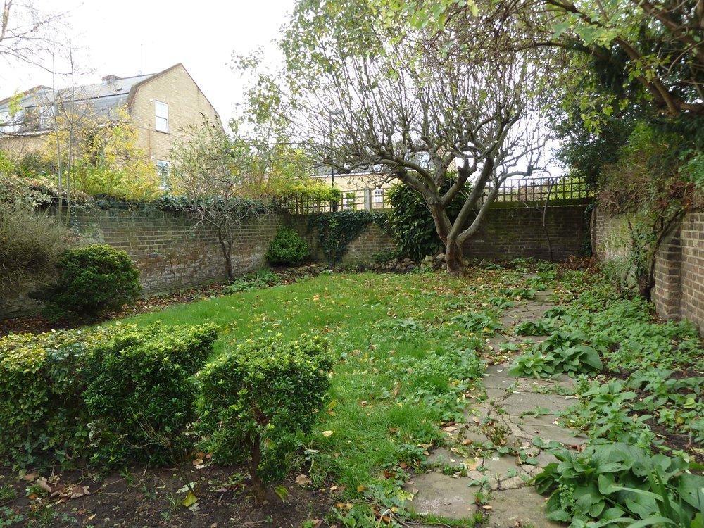 garden before.jpg