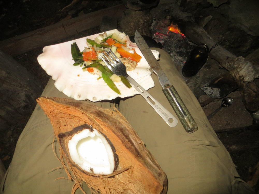 Belize, Island foraged meal.jpg
