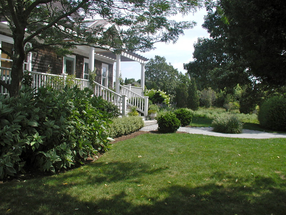 Garrahy Robertson Garden, East side, After in Summer #2.jpg