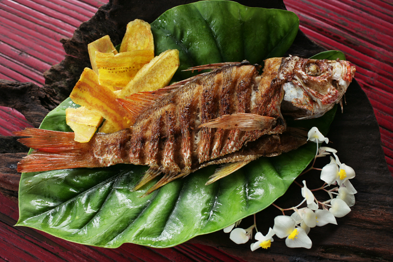 Iguana Lodge Snapper with Plantain Chips