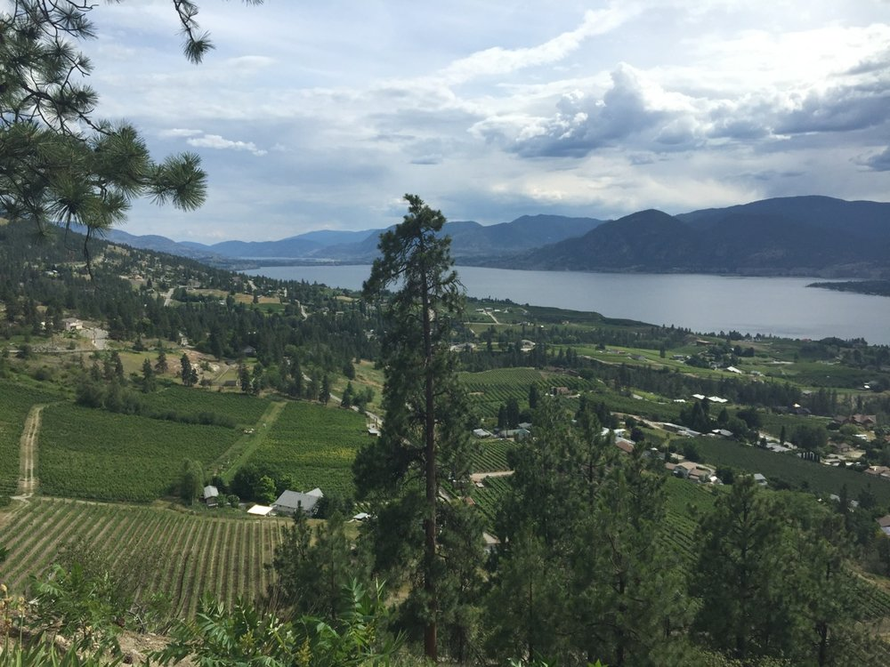 The view of Okanagan Lake as you come into Naramata.