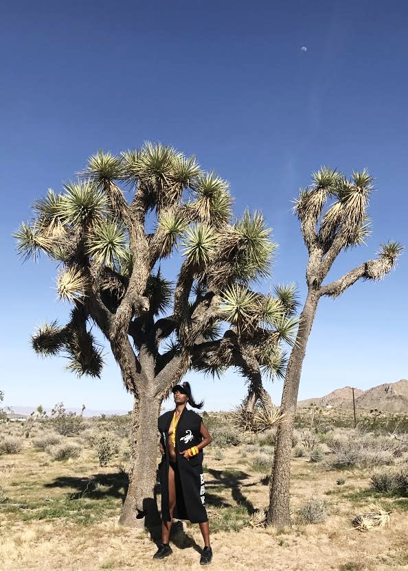 What do they mean? - The Joshua tree is an important part of the desert ecological system and the desert landscape. The Joshua tree reminds us that if we persevere we will not only survive, but we will grow in unique ways.
