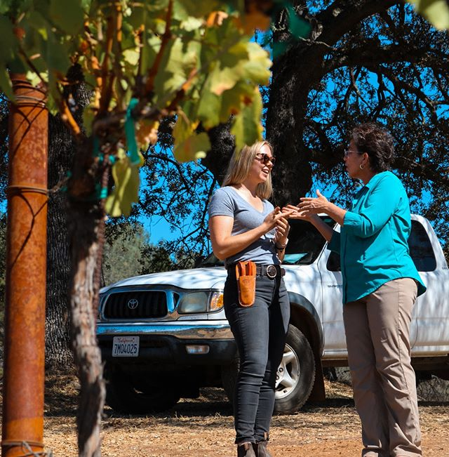 Mentorship Monday 💯 Ann Kraemer, entrepreneur and viticulturist, purchased Shake Ridge Ranch in Amador and planted her vineyard in 2003. She currently works with some of the best winemakers out there and is a wealth of knowledge about sustainable viticultural practices! We are blessed to work with her and learn from her every year! 🍇