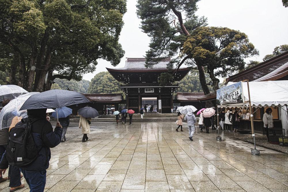 temple visit ando japan tokyo bingetokyo