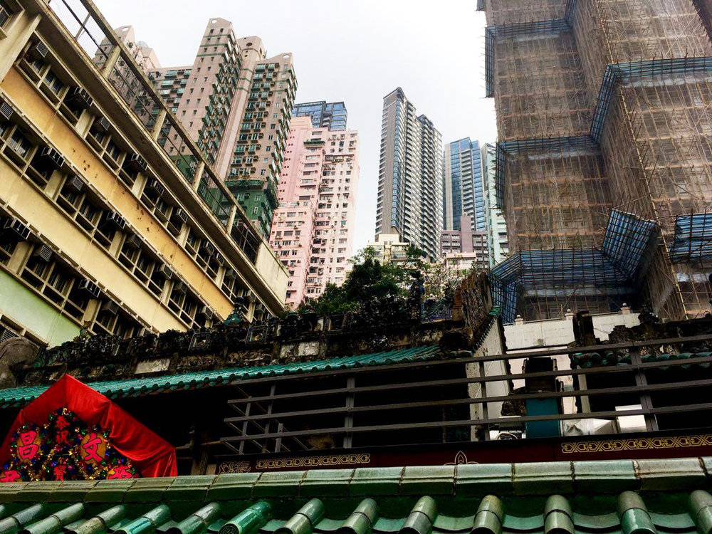 Hong Kong es el bosque de concreto que todos tenemos en mente, pero también un paraíso natural.