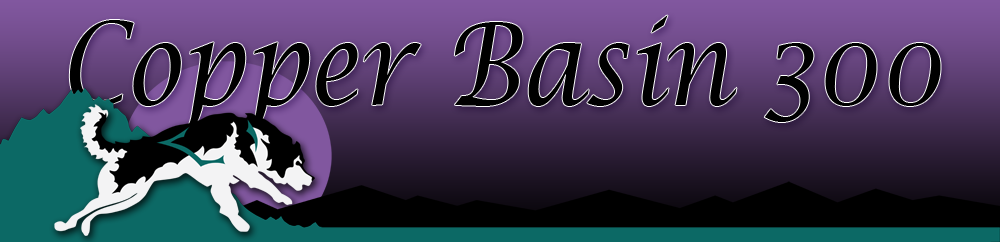 cb300banner.png