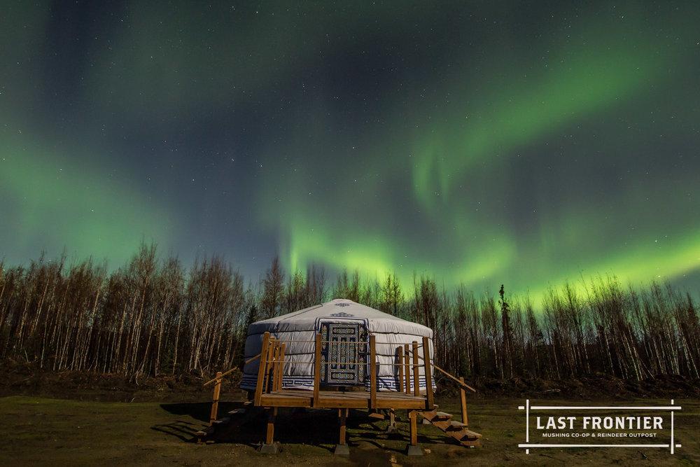 last frontier mushing co-op aurora