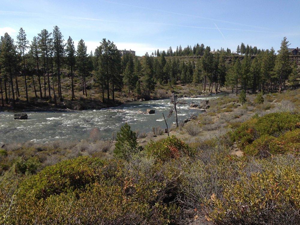 River section 1.jpg