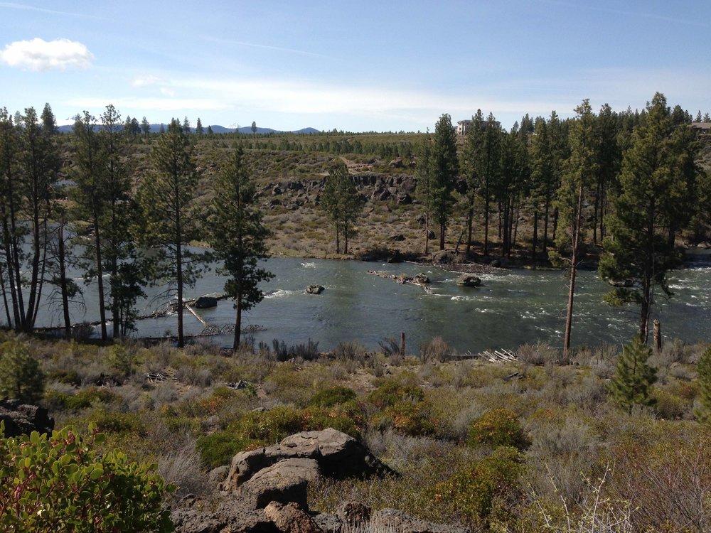 River Section 2.jpg