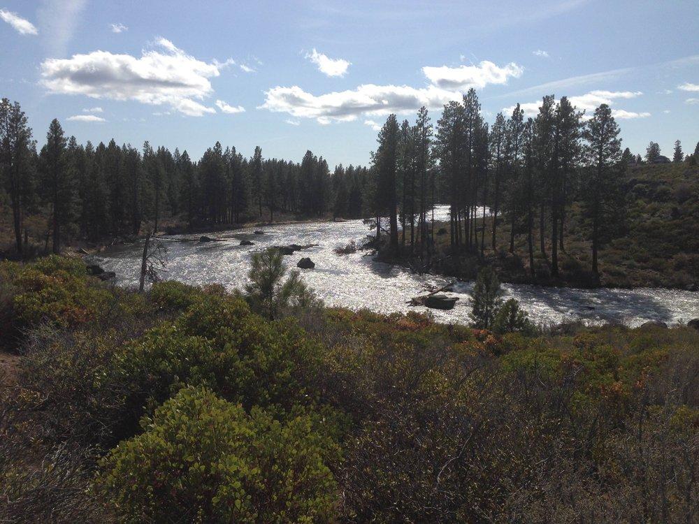 River Section 3.jpg