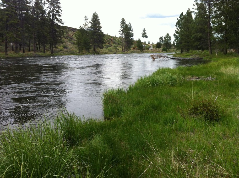 River Section 4.jpg