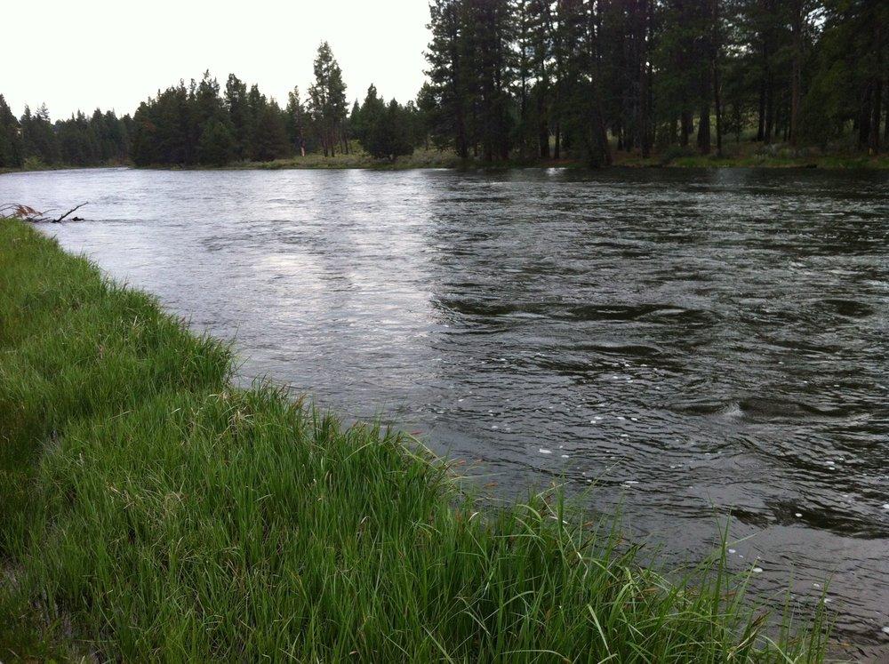 River Section 5.jpg