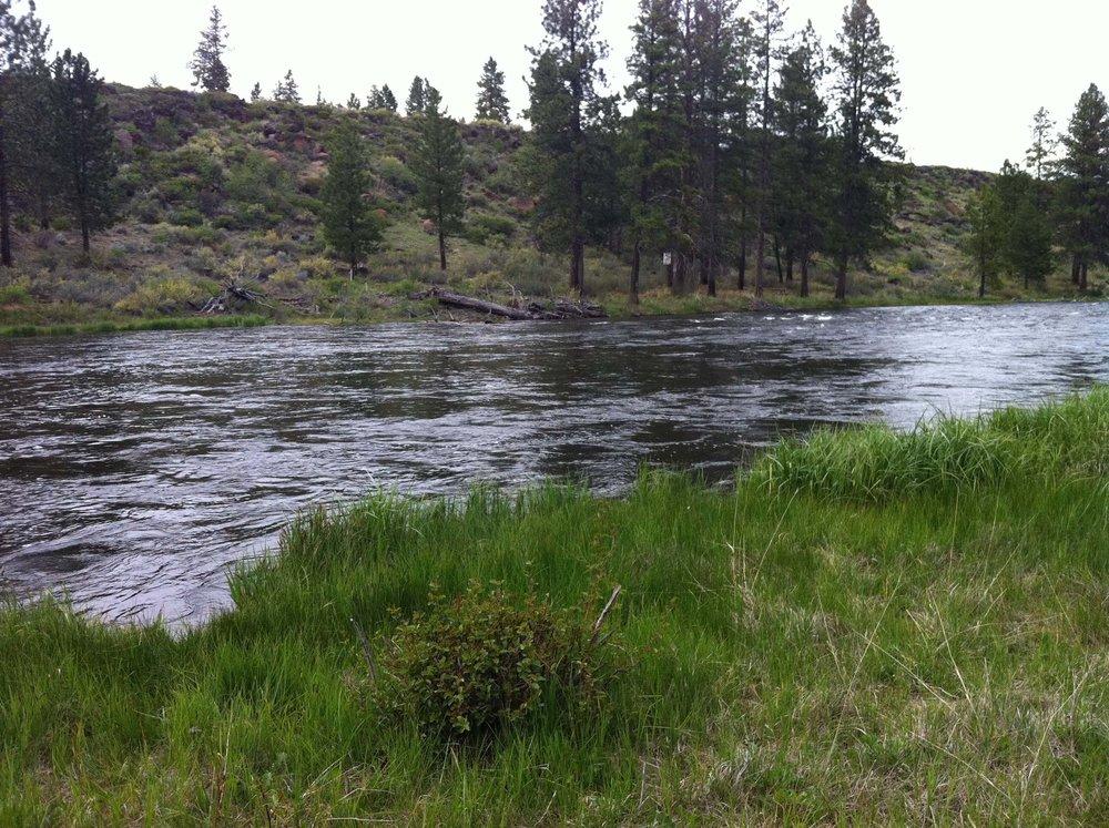 River Section 6.jpg