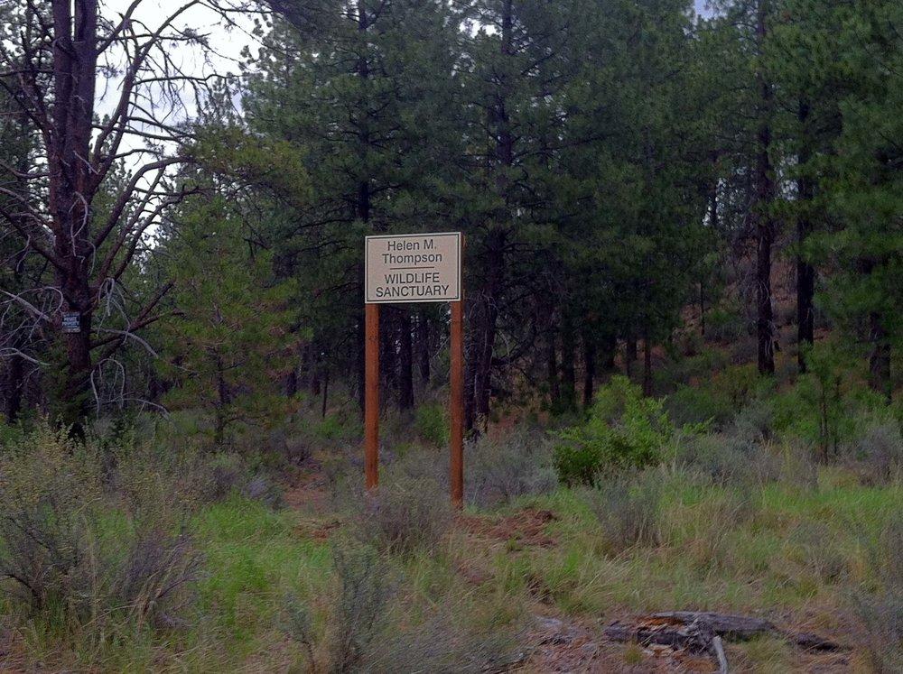 Sanctuary Sign.jpg