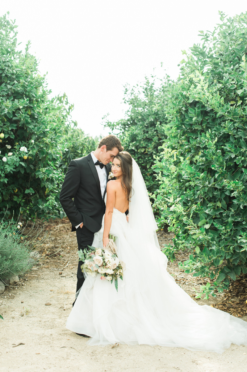 elevatedpulsepro.com | Romantic Al Fresco Wedding Gerry Ranch | Lorely Meza Photo (25).jpg