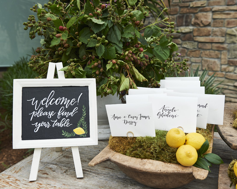elevatedpulsepro.com | Italian Inspired Wedding in Laguna Beach | Brett Hickman Photography.jpg