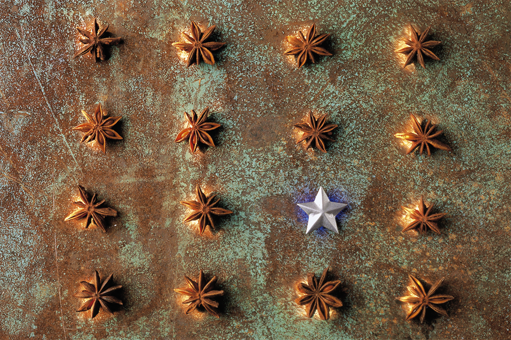 whwWeb_CENfAD_Photo_Star Anise (C34).png