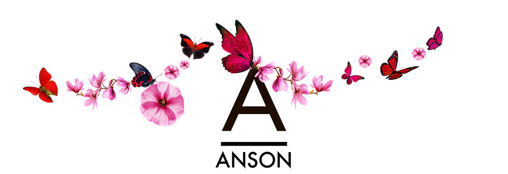 whwWeb_Arkadia_Corridor_Anson.jpg