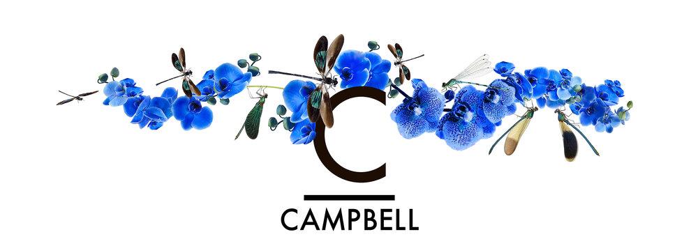 whwWeb_Arkadia_Corridor_Campbell.jpg