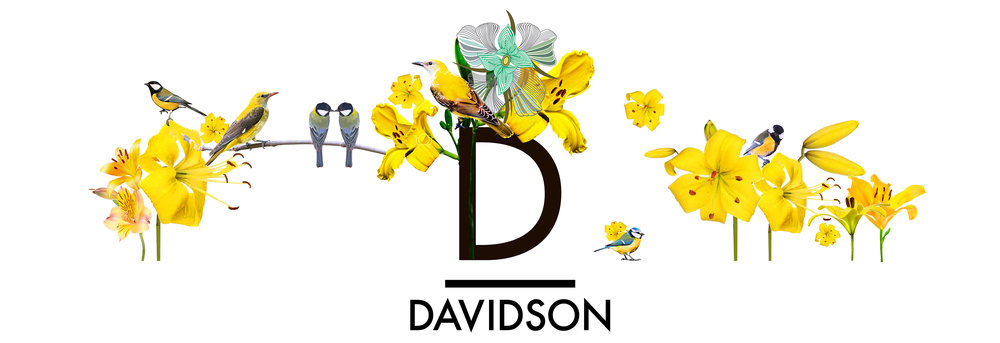 whwWeb_Arkadia_Corridor_Davidson.jpg