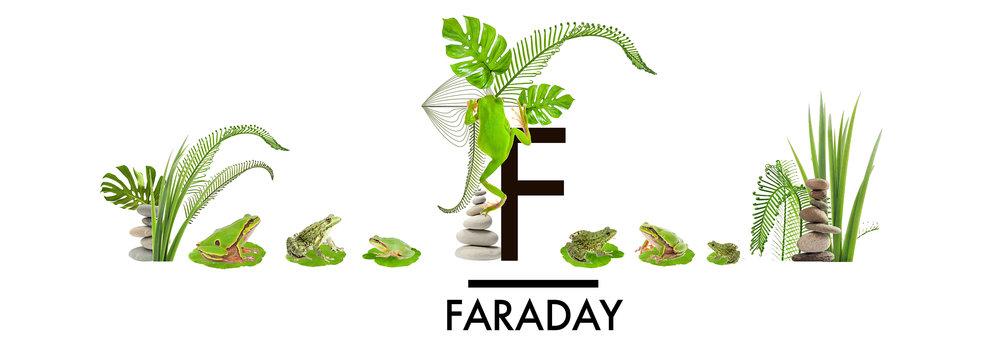 whwWeb_Arkadia_Corridor_Faraday.jpg