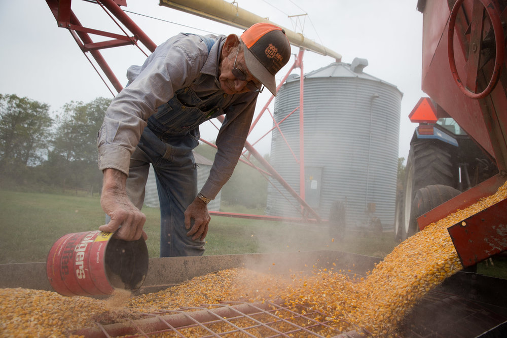 To keep the bugs away while in storage, Carl adds insecticide to the corn as it comes out of the gravity flow and feeds into the grain silo.