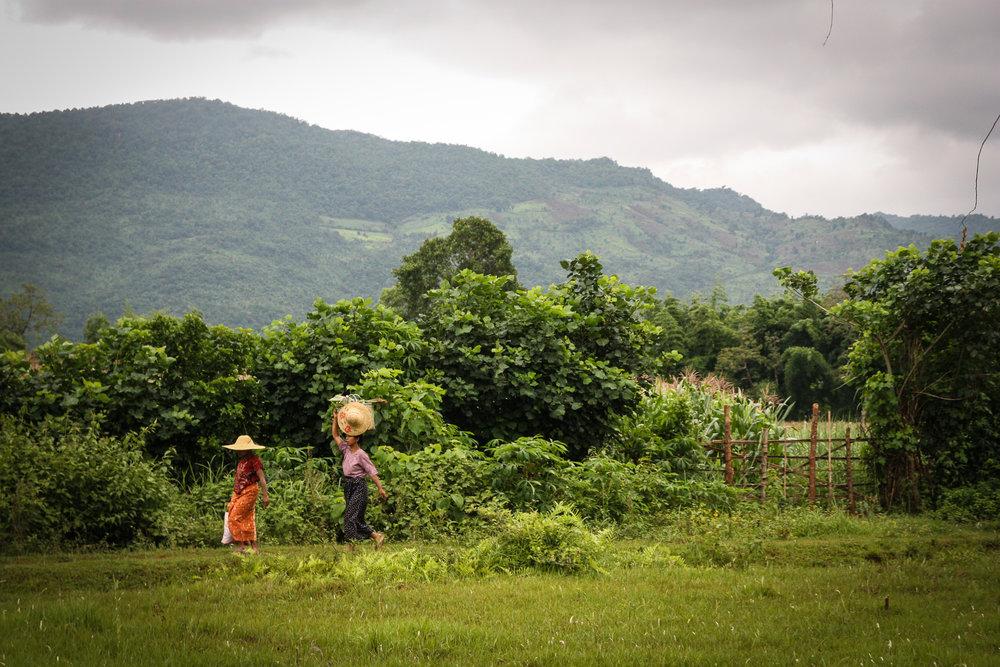 Burma-289.jpg